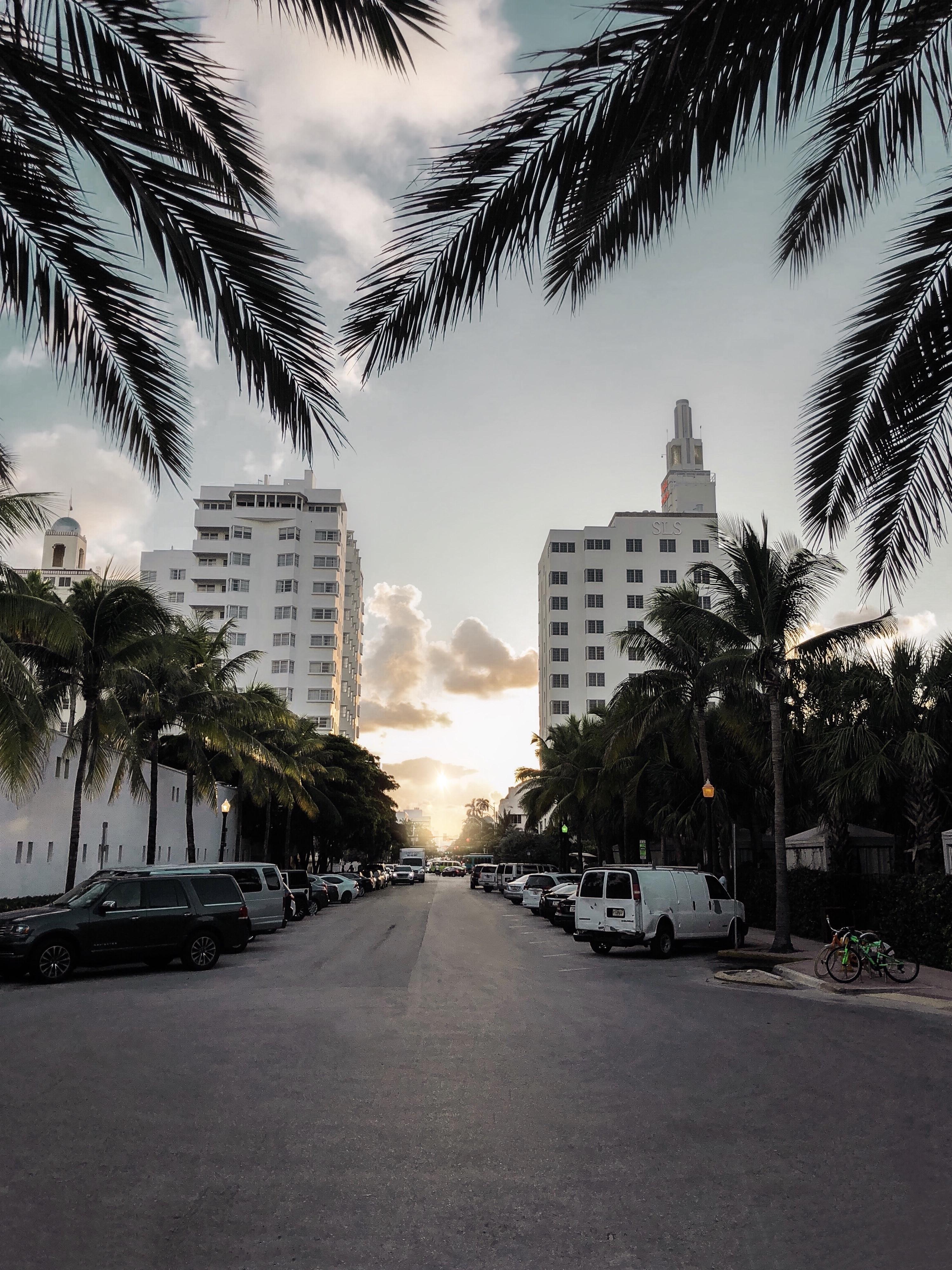 Kenza-Miami-2O18-31